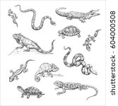 Vector Collection Of Reptiles....