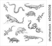 vector collection of reptiles.... | Shutterstock .eps vector #604000508