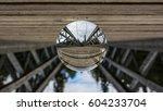 Suspension Bridge Through The...