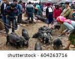 dong van  ha giang  vietnam ... | Shutterstock . vector #604263716