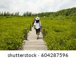 rayong  thailand   august 10  ... | Shutterstock . vector #604287596