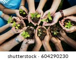 people hands cupping plant... | Shutterstock . vector #604290230