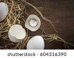 'matured investment'   a...   Shutterstock . vector #604316390