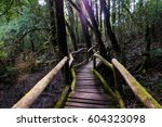 nature trail | Shutterstock . vector #604323098