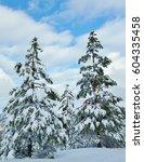 Winter Wonderland In The...