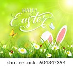 ears of an easter bunny and... | Shutterstock . vector #604342394