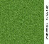 texture green lawn   Shutterstock . vector #604375184