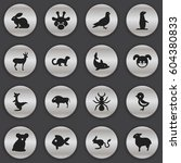 set of 16 editable zoo icons.... | Shutterstock .eps vector #604380833