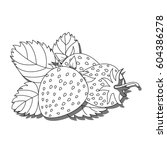 coloring the strawberries ... | Shutterstock .eps vector #604386278