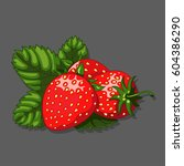 strawberries  leaves and... | Shutterstock .eps vector #604386290