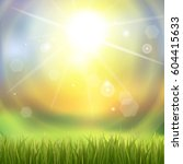 fresh green grass. sunburst... | Shutterstock .eps vector #604415633