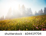 blooming grazing land in the... | Shutterstock . vector #604419704
