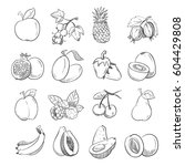 hand drawing doodle fruits... | Shutterstock .eps vector #604429808