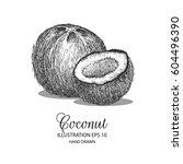 coconut hand drawn illustration ... | Shutterstock .eps vector #604496390
