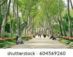 tulips festival in gulhane park ...   Shutterstock . vector #604569260