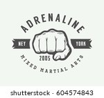 vintage mixed martial arts logo ... | Shutterstock .eps vector #604574843