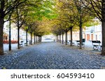 Alley Of Trees Boulevard In A...