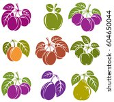 collection of simple fruits... | Shutterstock .eps vector #604650044