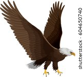 bald eagle isolated on white  ... | Shutterstock .eps vector #604650740