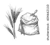 wheat and bag of flour. hand...   Shutterstock .eps vector #604662110