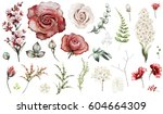 set elements of red rose ... | Shutterstock . vector #604664309