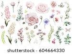 set elements of rose  hyacinth. ... | Shutterstock . vector #604664330