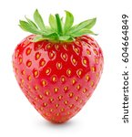strawberry. fresh berry... | Shutterstock . vector #604664849