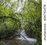 waterfall in a swift stream...   Shutterstock . vector #604741478