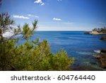 coast of ametlla de mar   costa ... | Shutterstock . vector #604764440