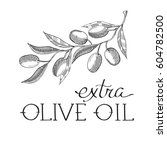 the olive extra virgin. hand... | Shutterstock .eps vector #604782500