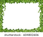 square decorative frame of ivy... | Shutterstock .eps vector #604802606
