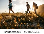 three young friends on a... | Shutterstock . vector #604808618