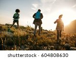 three young friends on a... | Shutterstock . vector #604808630