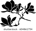 magnolia branch with flowers ... | Shutterstock .eps vector #604861754