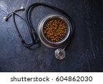 veterinary theme | Shutterstock . vector #604862030