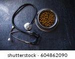 veterinary theme | Shutterstock . vector #604862090