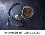 veterinary theme | Shutterstock . vector #604862153