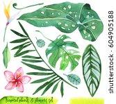 summer hand drawn watercolor... | Shutterstock . vector #604905188