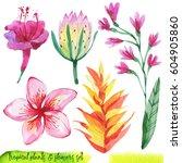 summer hand drawn watercolor... | Shutterstock . vector #604905860