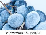 grapes frozen. isolation on the ... | Shutterstock . vector #60494881