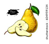 pear vector drawing. isolated... | Shutterstock .eps vector #604959134
