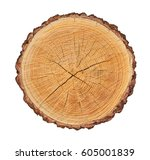 wooden stump isolated on the... | Shutterstock . vector #605001839