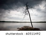 pristine nature of the Russian North - stock photo