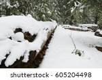 snow covered ground  roads and... | Shutterstock . vector #605204498