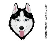 Black And White Siberian Husky...