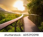 Small photo of Tree Canopy Walkway (wooden bridge) in Kirstenbosch National Botanical Garden is acclaimed as one of the great botanic gardens of the world with gold light sky background, Cape Town, South Africa
