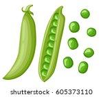 cartoon green peas  flat design ...   Shutterstock .eps vector #605373110