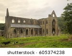 Small photo of Tintern Abby, Tintern, Chepstow, UK, August 11 2016, Shot from public land, Tintern Abby was dissolved during the abolishment of the catholic church in england during the rule of King Henry the 8th