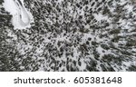 Top View Of Winter Forest And...