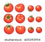 fresh tomato illustration... | Shutterstock .eps vector #605393954